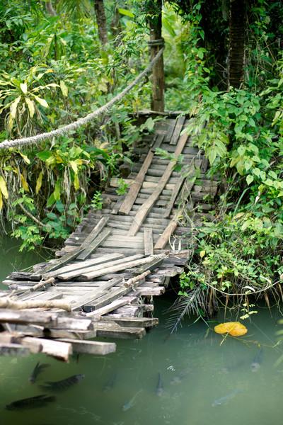 висячий мост водохранилище фермы Таиланд дерево Сток-фото © timbrk