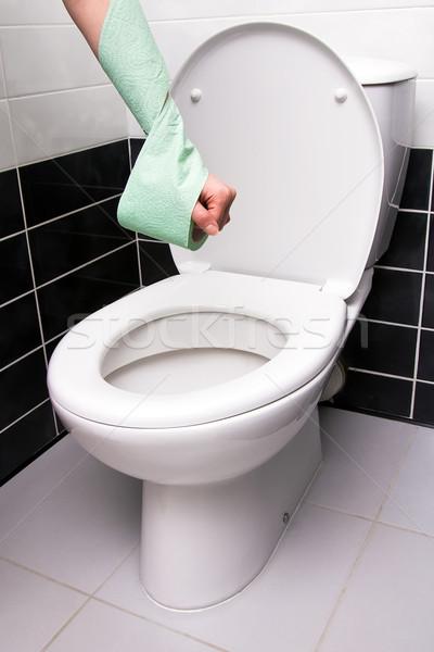 Toilet Stock photo © timbrk