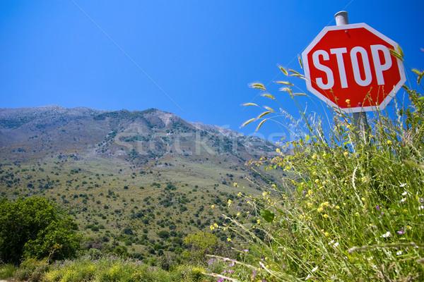 Stop invázió természet jelzőtábla hegy tájkép Stock fotó © timbrk