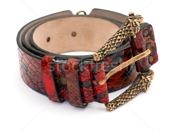 Red snake leather belt Stock photo © timbrk