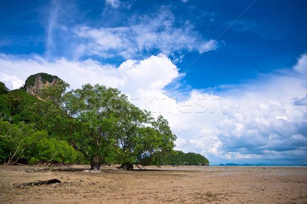 West Railay beach Stock photo © timbrk