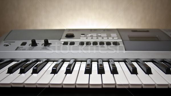 Piano keyboard Stock photo © timbrk