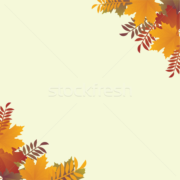 ősz szalag színes levelek háttér keret Stock fotó © tina7shin