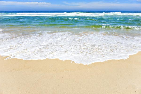 Open beach on a tropical island Stock photo © tish1