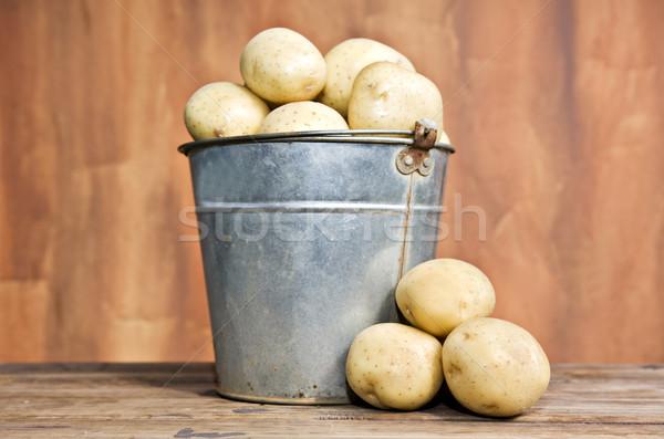 Bucket of fresh potatoes Stock photo © tish1