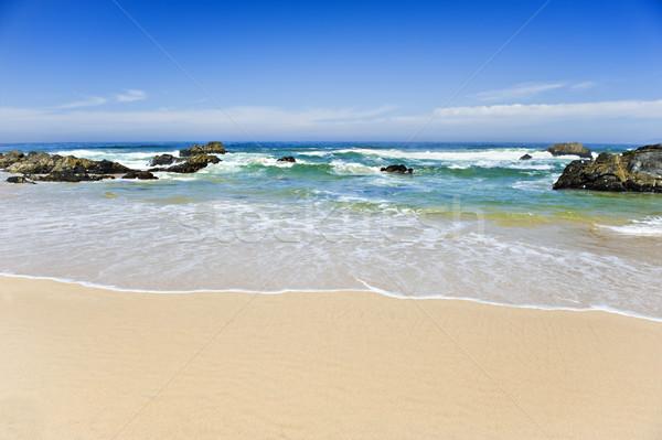 Beautiful beach on a tropical island - shallow depth of field Stock photo © tish1
