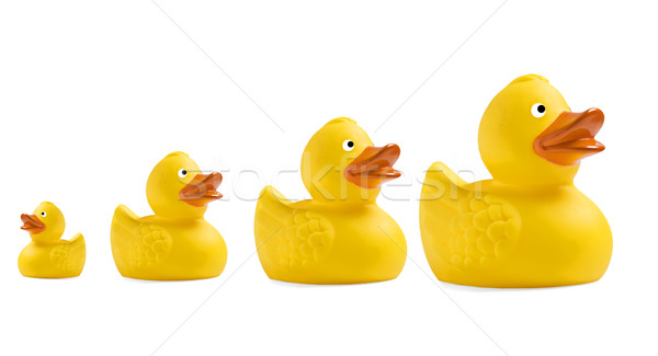 Yellow toy duckling on white background Stock photo © tish1