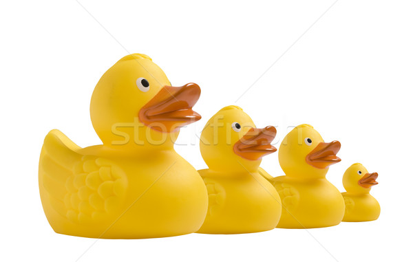 Yellow toy duckling on white Stock photo © tish1