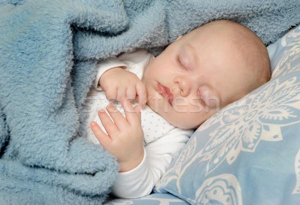 Küçük bebek uyku çok güzel yüz sevmek Stok fotoğraf © tish1
