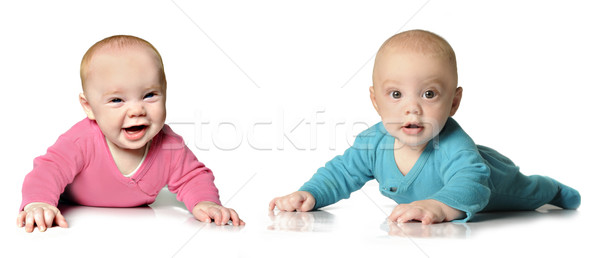 Six month old twin brother and sister Stock photo © tish1