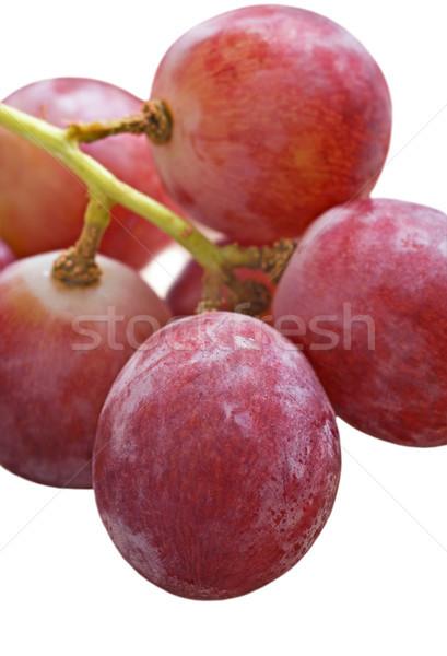 Beyaz gıda şarap meyve Stok fotoğraf © tish1