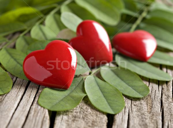 Kırmızı kalp süsler yeşil yaprakları düğün soyut Stok fotoğraf © tish1
