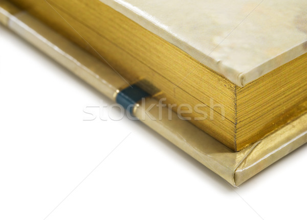 Close up of a golden colored journal on white Stock photo © tish1