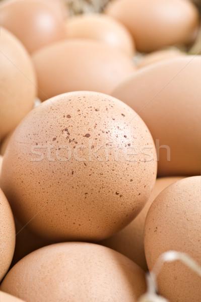 Frischen gesunden Eier Bauernhof bereit gekocht Stock foto © tish1