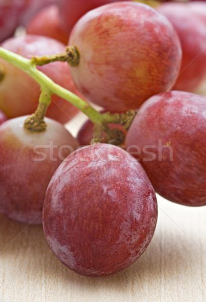 Monte comida vinho outono Foto stock © tish1
