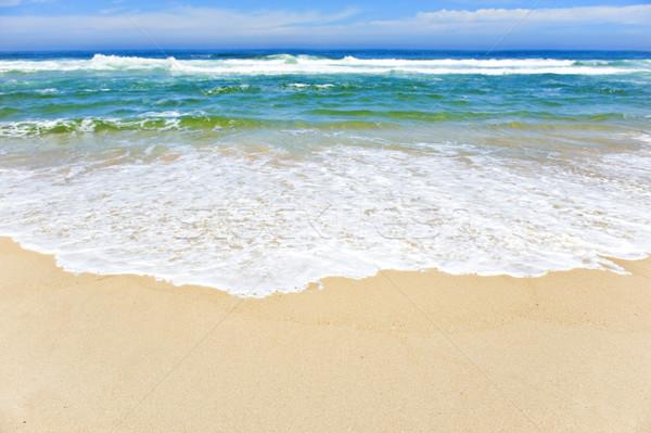 открытых пляж Тропический остров небе природы лет Сток-фото © tish1