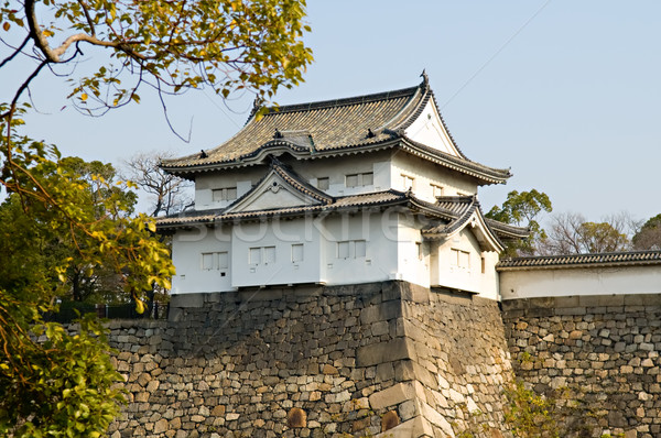 The castle Stock photo © tito