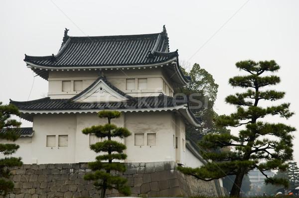 Kasteel kyoto stad bomen architectuur japans Stockfoto © tito