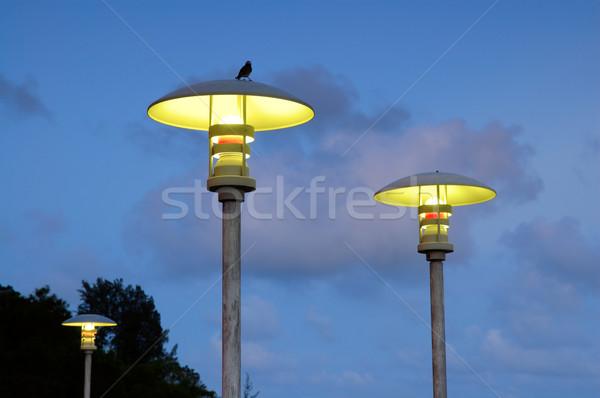 Calle lámparas cielo azul cielo nubes aves Foto stock © tito