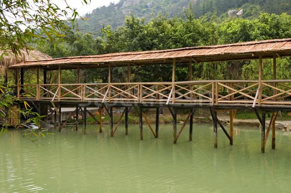 Wooden bridge Stock photo © tito