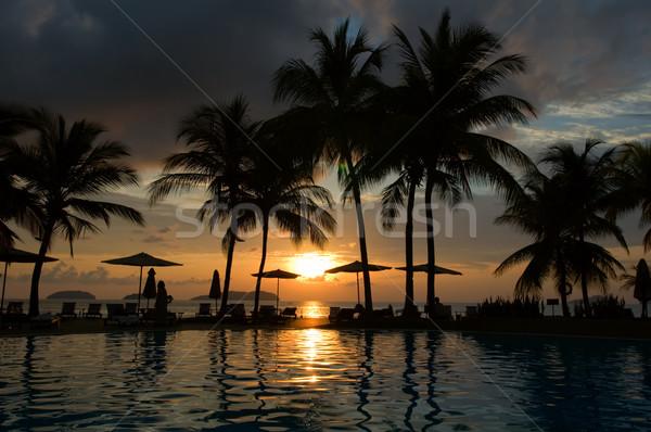 Avond tropische hotel silhouet palmboom zwembad Stockfoto © tito