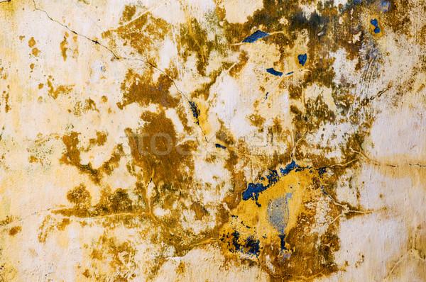 Grunge wall Stock photo © tito
