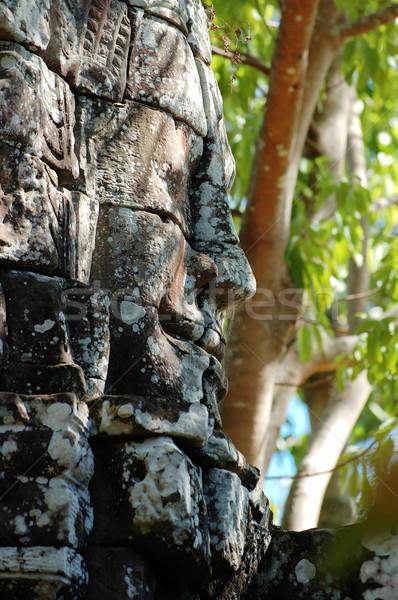 Angkor yüz eski tapınak ağaç yeşil Stok fotoğraf © tito
