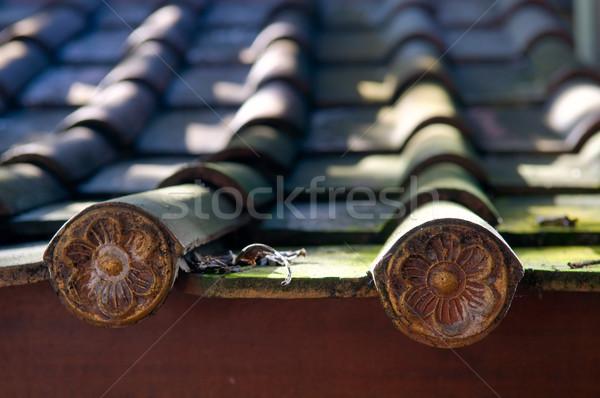 Detail patroon tegels huis gebouw Stockfoto © tito