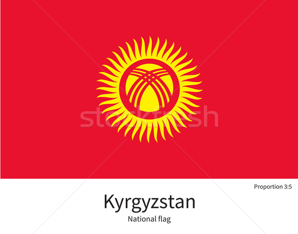 Bayrak Kırgızistan düzeltmek renkler eğitim Stok fotoğraf © tkacchuk