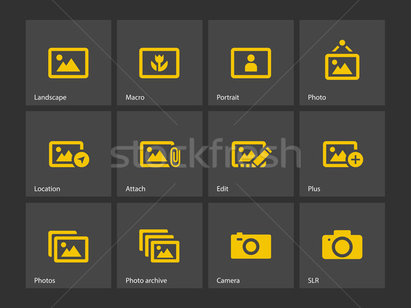 Photographs and Camera icons. Stock photo © tkacchuk