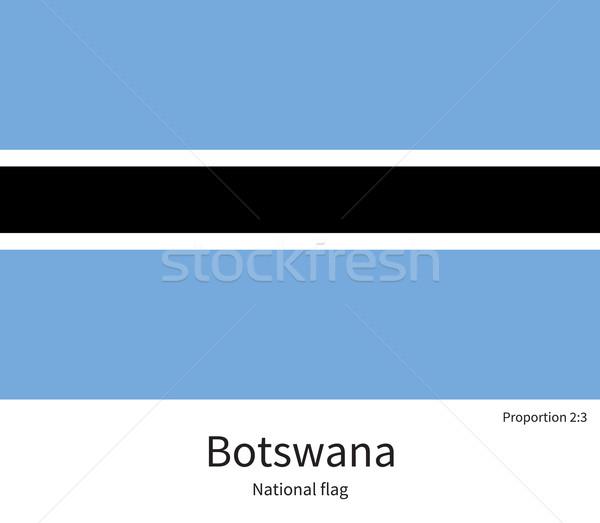 Bandeira Botswana corrigir elemento cores educação Foto stock © tkacchuk