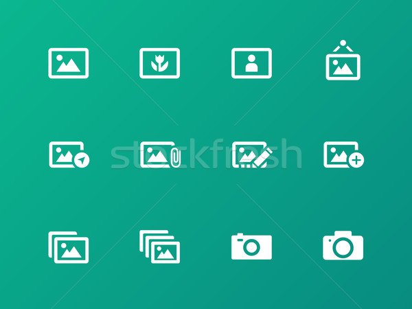 Photographs and Camera icons on green background. Stock photo © tkacchuk