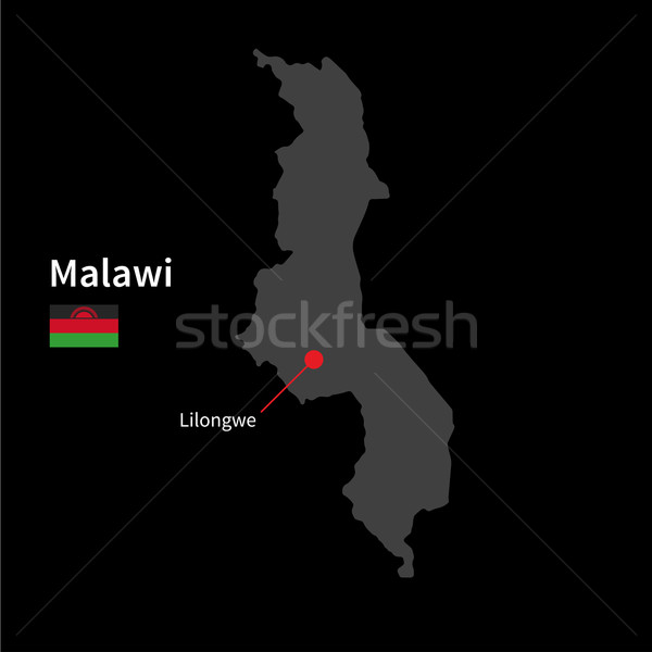 Detailed map of Malawi and capital city Lilongwe with flag on black background Stock photo © tkacchuk