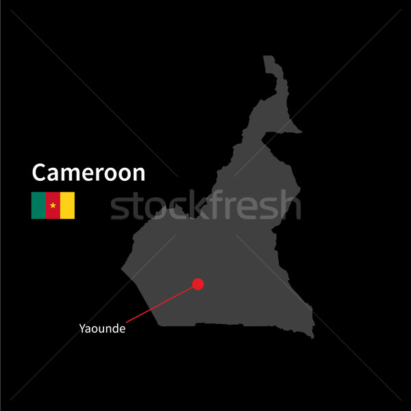 Detalhado mapa Camarões cidade bandeira preto Foto stock © tkacchuk