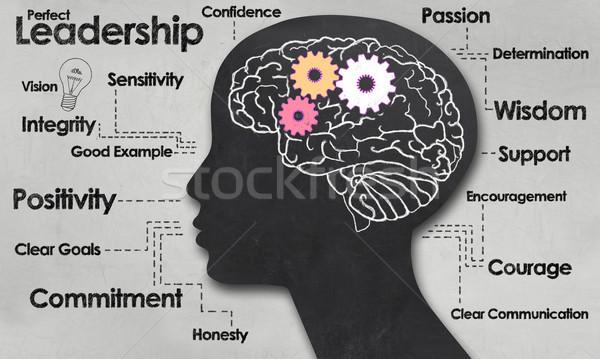パーフェクト リーダーシップ 女性 脳 ポジティブ ストックフォト © TLFurrer