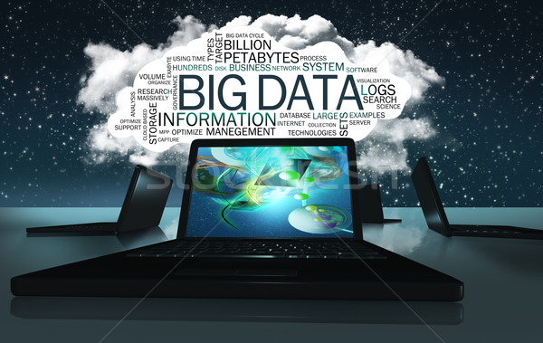 Word Cloud with Terms of Big Data Stock photo © TLFurrer