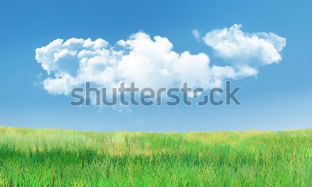 Cumulus Clouds and Grass Landscape Stock photo © TLFurrer