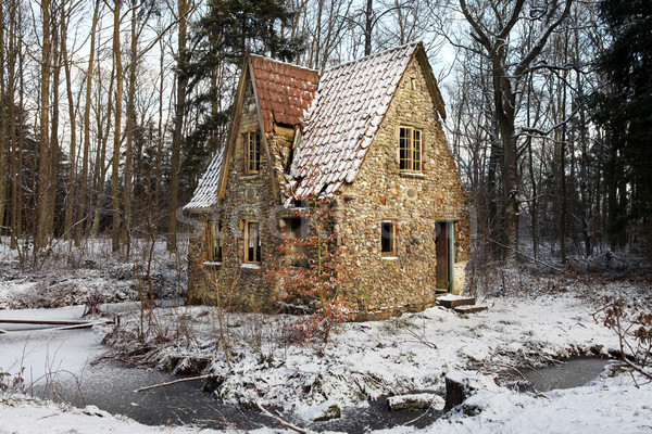 ruin forest lodge home in winter Stock photo © tlorna