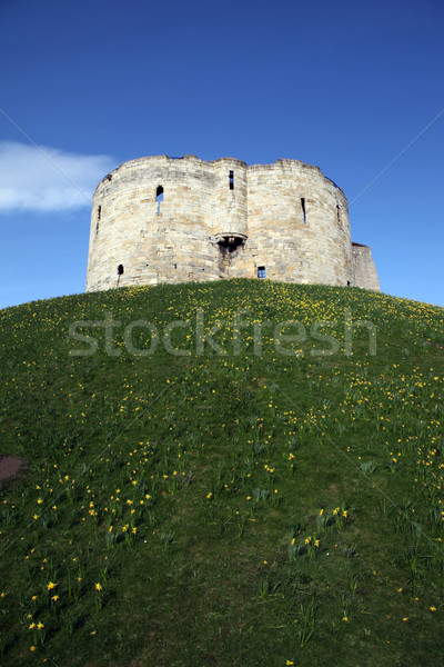 Castle York,Clifford's Tower Stock photo © tlorna