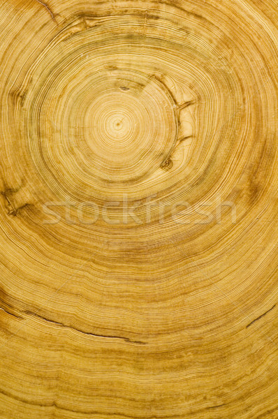 Woodgrain texture Stock photo © tmainiero