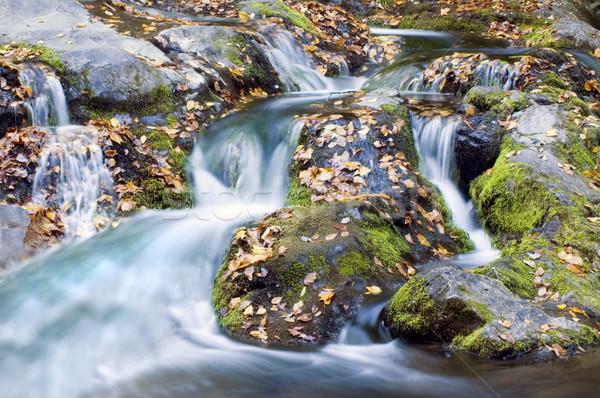 ストックフォト: 秋 · 滝 · スモーキー · 山 · 森林