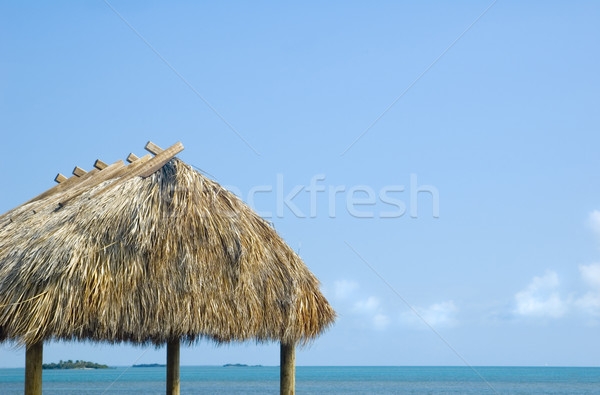 Stock photo: Tropical Grass Hut