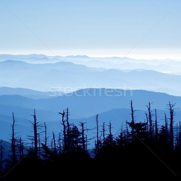 Muhteşem dumanlı dağlar park güzel görmek Stok fotoğraf © tmainiero