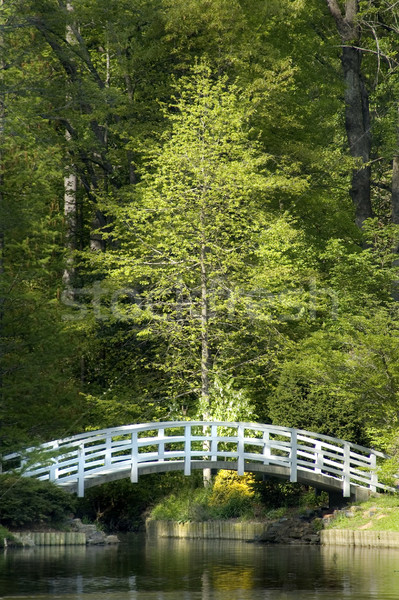 Maan brug japans tuin koi vijver Stockfoto © tmainiero
