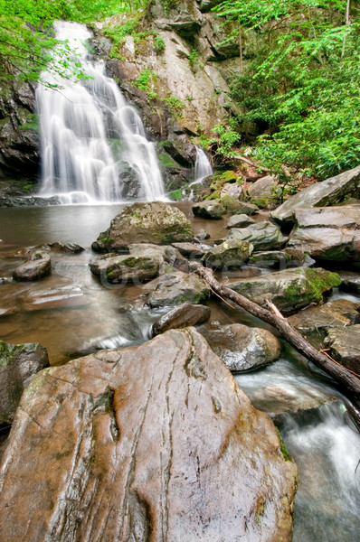 Spruce Flat Falls waterfall in smoky mountains Stock photo © tmainiero
