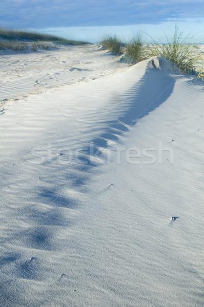 Dune de sable belle vue fort diagonal ligne Photo stock © tmainiero