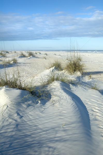 Güzel kum plaj gökyüzü Stok fotoğraf © tmainiero