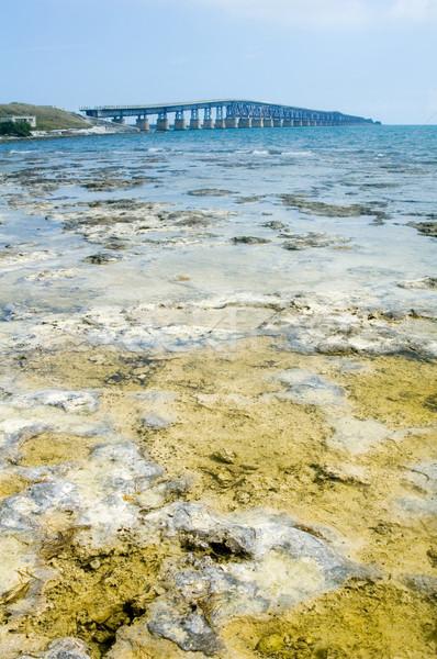 Florida keys bridge Stock photo © tmainiero