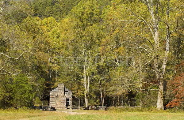Rustic log cabin, Cades Cove, Great Smoky Mountains National Park Stock photo © tmainiero