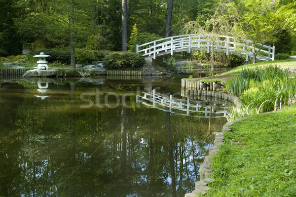 Japans zen tuin maan brug pagode Stockfoto © tmainiero